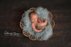 fluffy furs newborn (5).JPG
