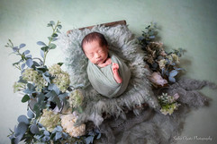 newborn net #5.jpg
