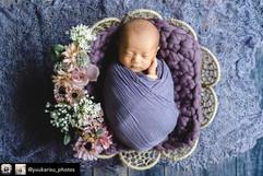 newborn net #7.jpg