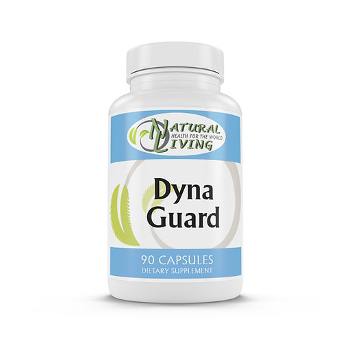 Dyna Guard