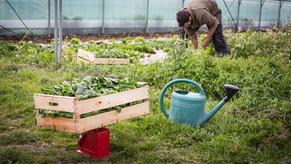 Développement rural : les entrepreneurs s'associent pour vous proposer du Made In Périgord