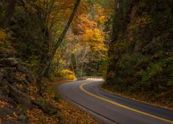 A Fall Drive