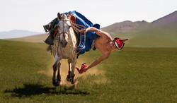 Mongolia Horseman 2019