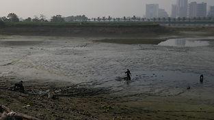 Un étang asséché pour la pêche