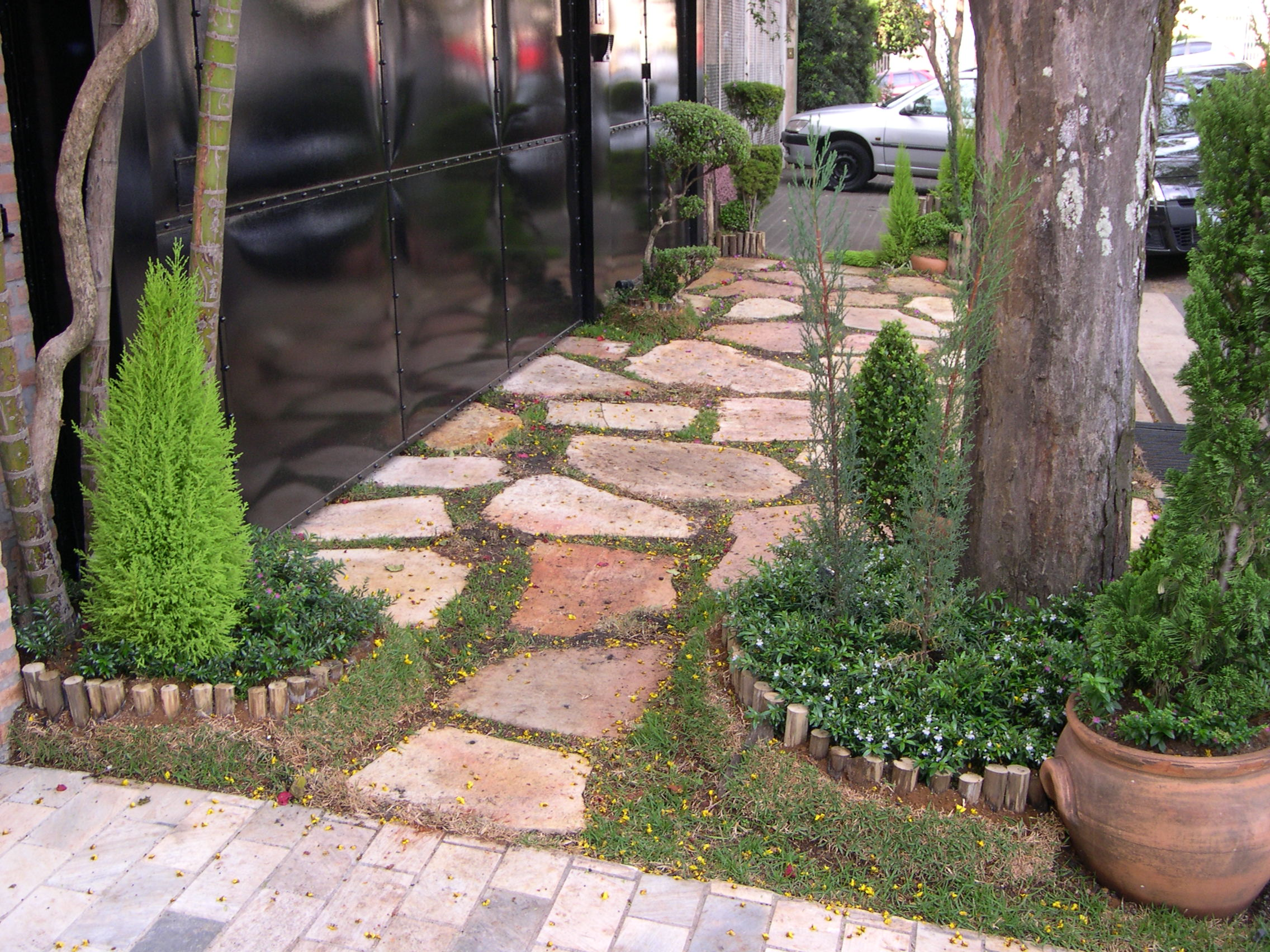 caminho pedra goiás