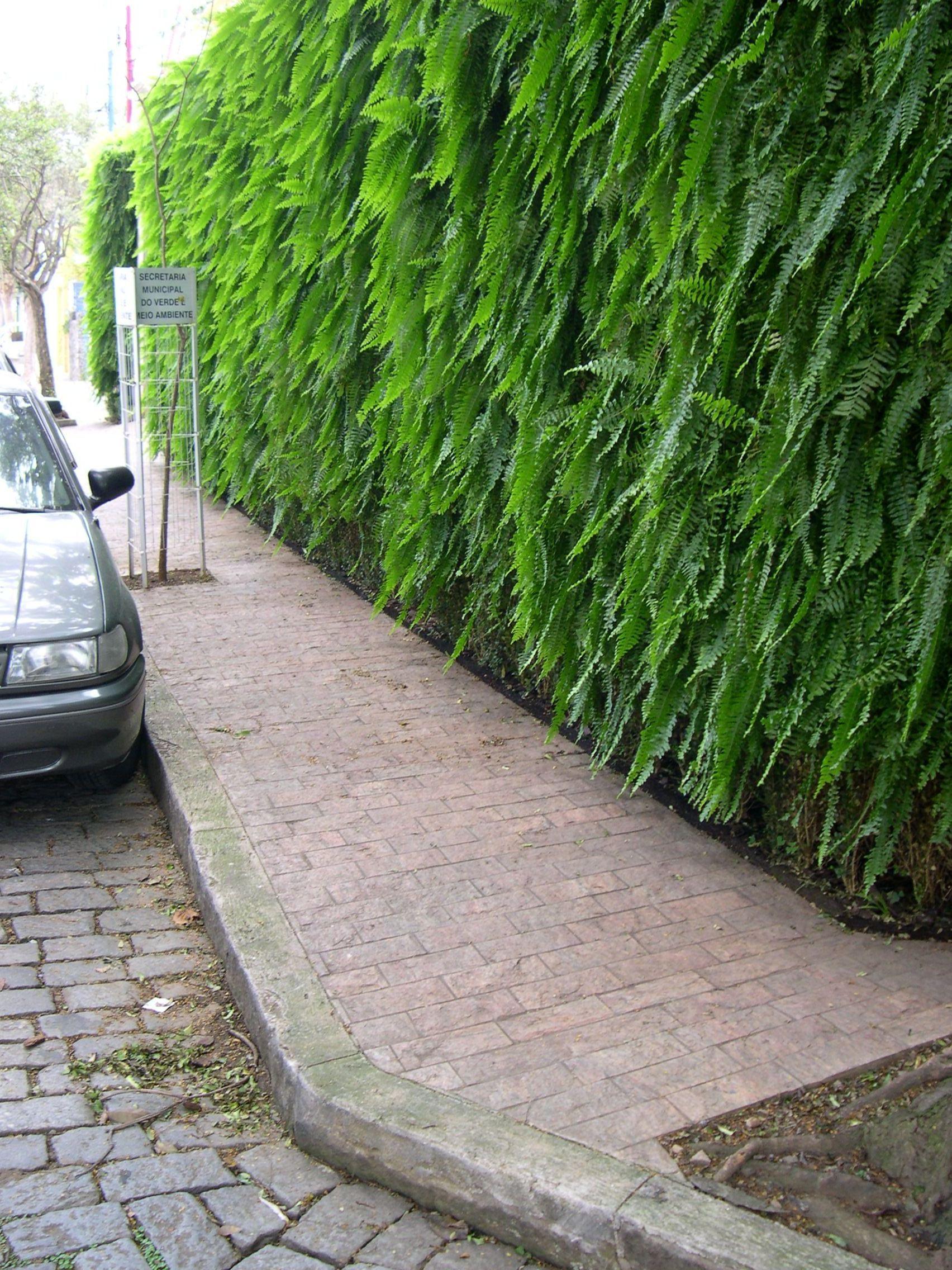 calçada pedra madeira (02)