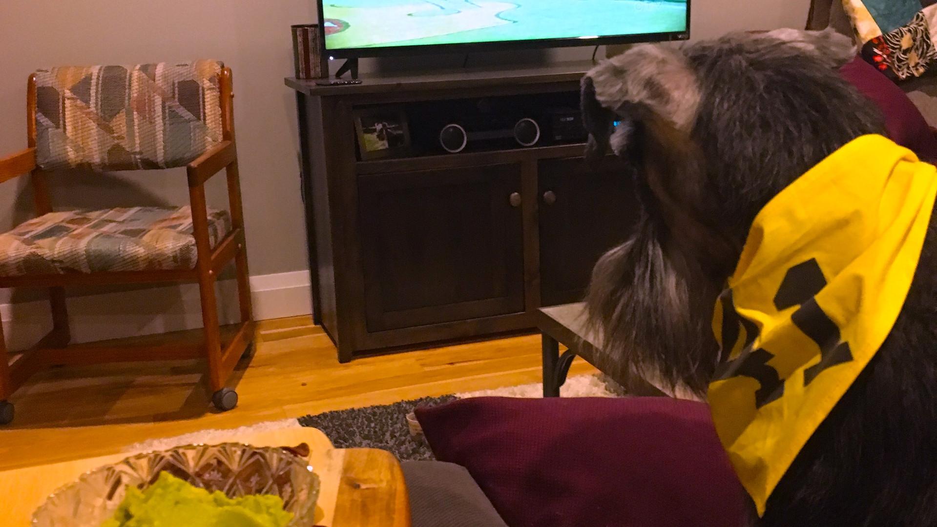 watching the super bowl.jpg