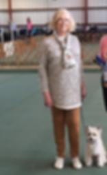 Carol Tollini dog trainer Pleasant Run Dog