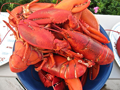 Campobello Island Lobster two nation vacation