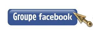 Bouton-FB-groupe.jpg