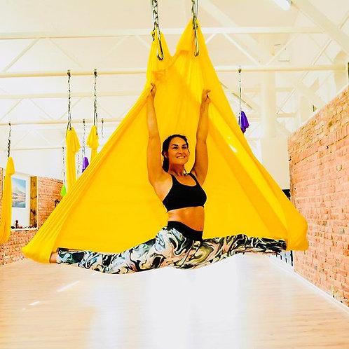 Aerial Yoga Silk/Hammock Set with Daisy Chains