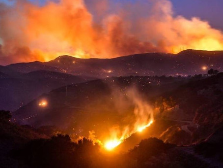 CALIFORNIA WILDFIRES: CONTINUED IMPACT ON THE ENVIRONMENT