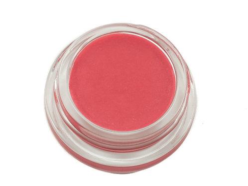 delilah phyto lip glaze