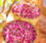 Dried-rose-buds-e72bd60e3c17.jpg
