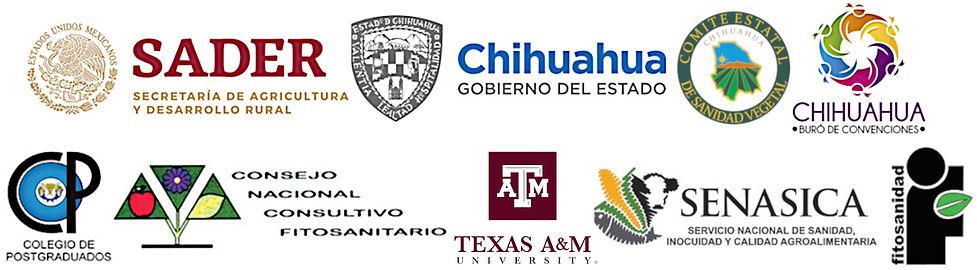 Banner logos 2020.jpg
