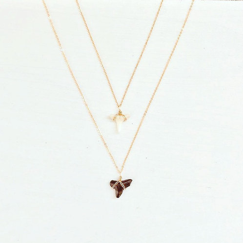 Hope Shark Tooth Necklace