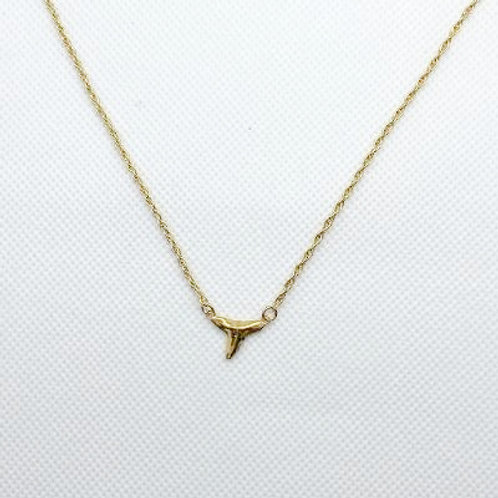 Rui Shark Tooth Cast Necklace