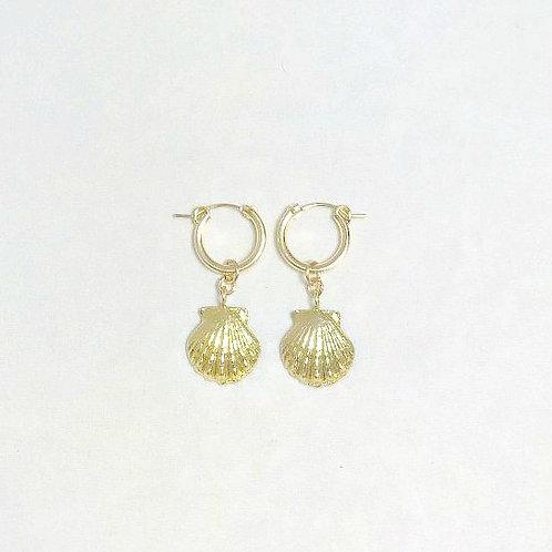 Aolani Sunrise Shell Cast Hoop Earrings