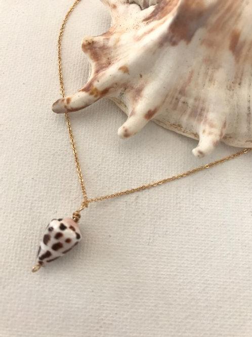 Baby Hebrew Cone Shell Necklace