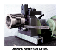 Mignon Series Flat Hard Way Example