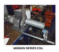 Mignon Coil Example
