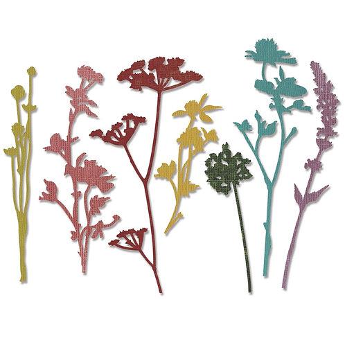 Sizzix Thinlits Dies By Tim Holtz 7/Pkg Wildflowers