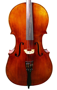 2.tg_.cello_.7.12_edited.png
