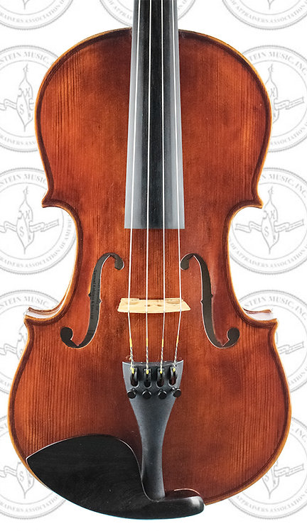 Liandro DiVacenza™ Viola (DVA050)