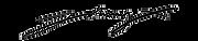 johnnyx logo 3.png