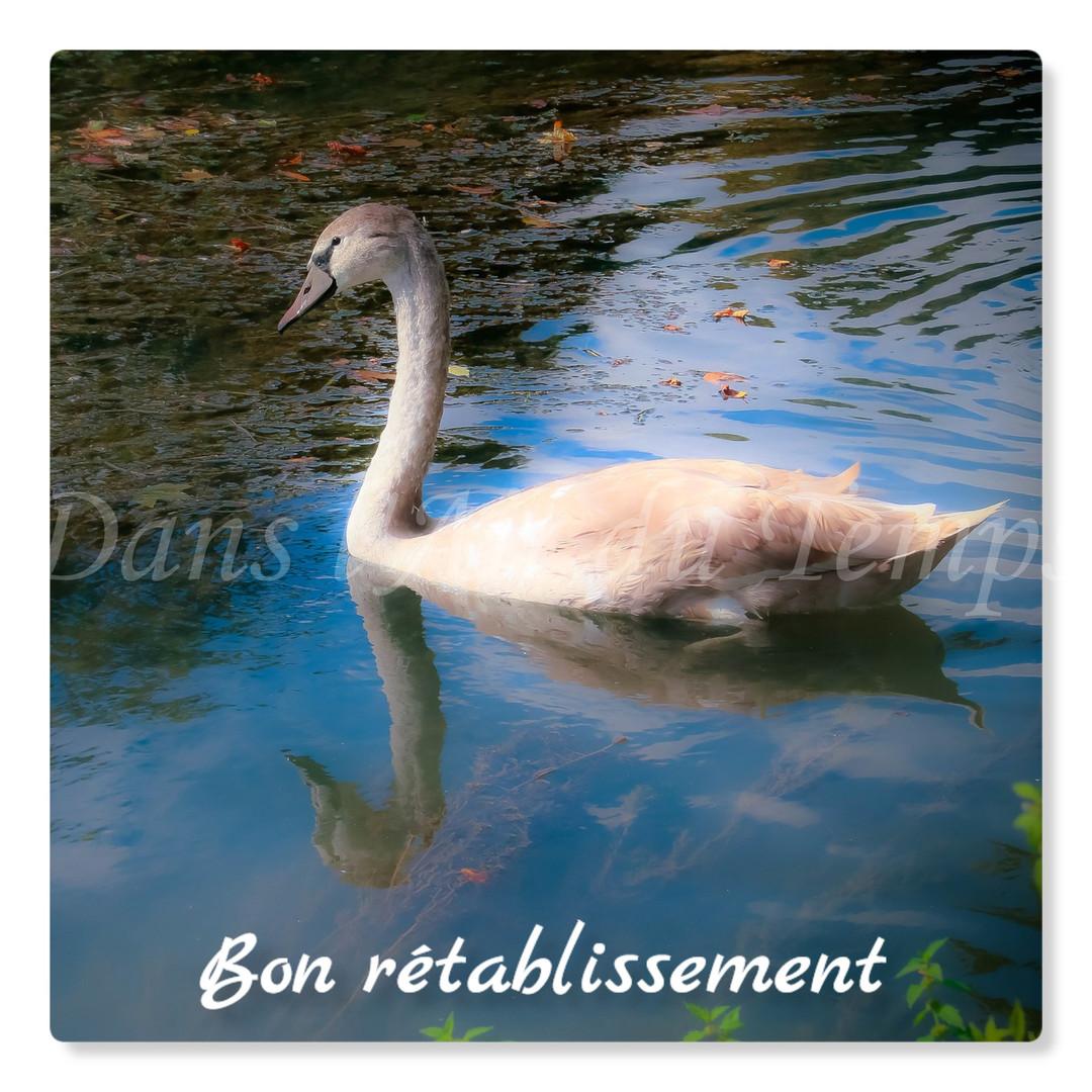 cartebonretablissement18.jpg