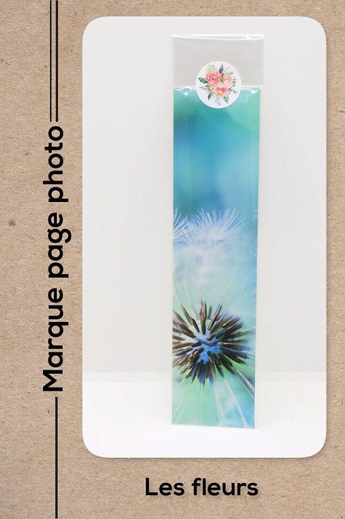Fleurs modèle 9 Pissenlits