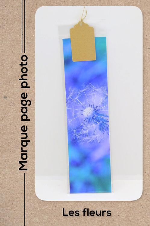 Fleurs modèle 23 Pissenlits pastel