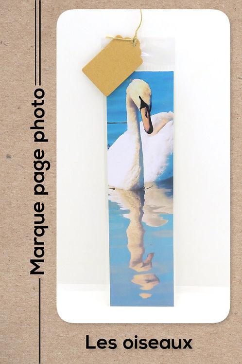 Oiseaux modèle 20 Cygne en reflet