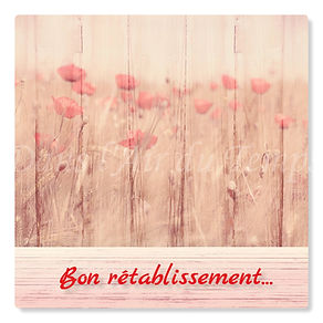 cartebonretablissement3.jpg