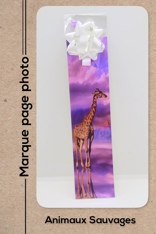 Animaux sauvages modèle 21 Girafe