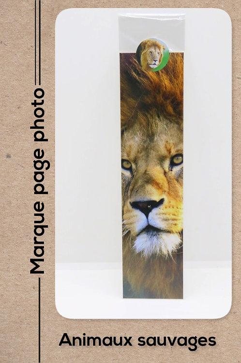 Animaux sauvages modèle 13 Lion