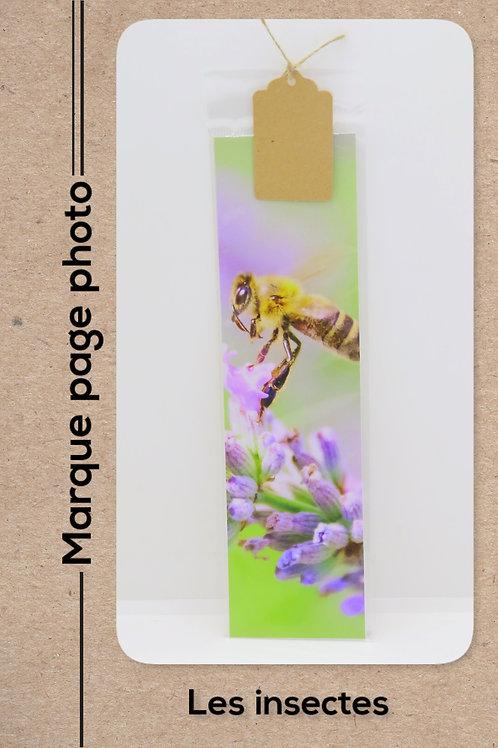 Insectes modèle 6 Abeille et lavande