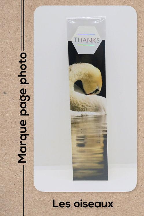 Oiseaux modèle 10 Cygne en reflet