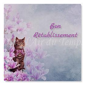 cartebonretablissement22.jpg