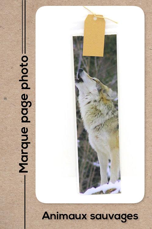 Animaux sauvages modèle 1 Loup