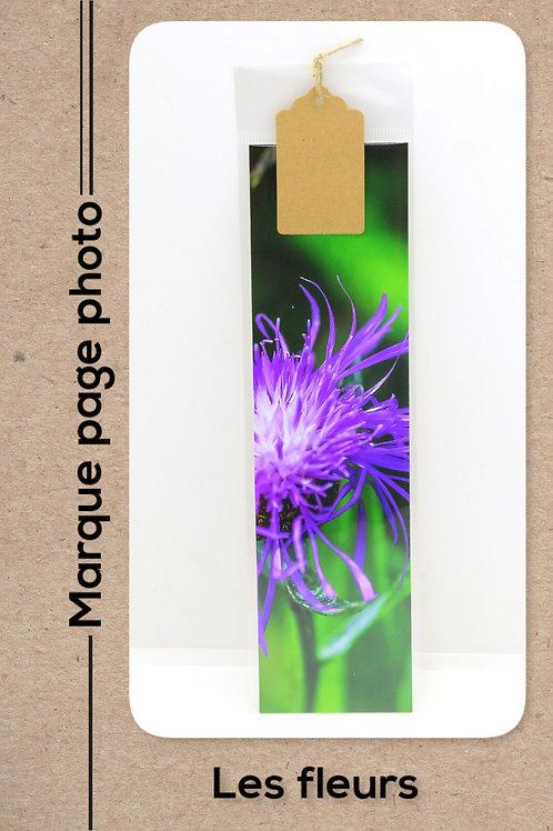 Fleurs modèle 48 Eclat pourpre