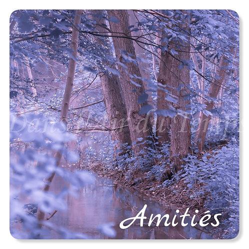 Carte photo Amitiés 22 forêt féérique