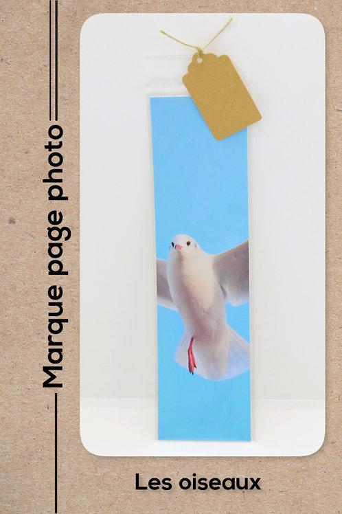 Oiseaux modèle 27 Mouette