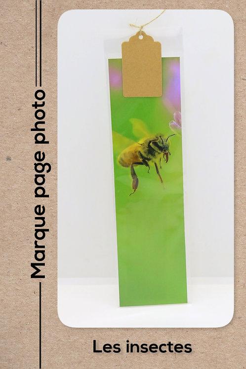 Insectes modèle 9 Abeille
