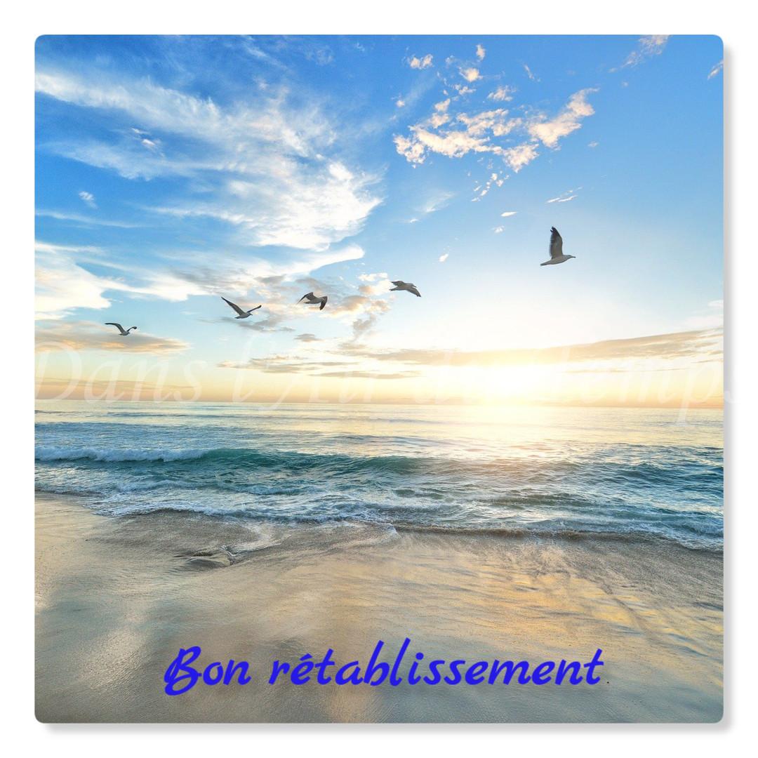 cartebonretablissement4.jpg