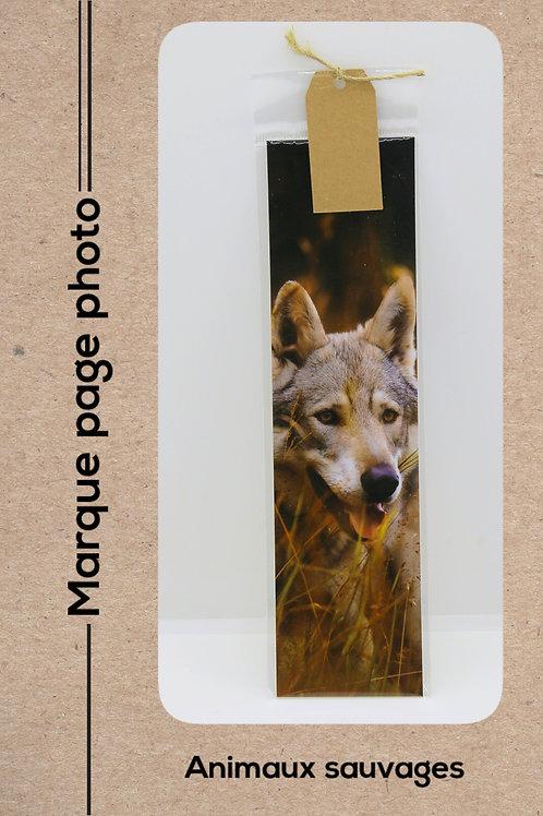 Animaux sauvages modèle 7 Loup