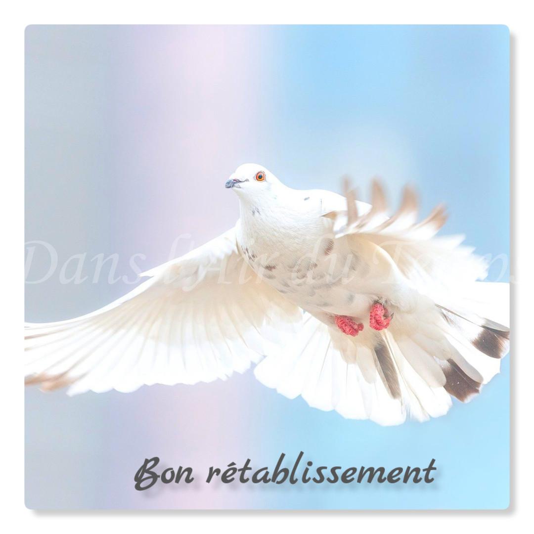 cartebonretablissement8.jpg