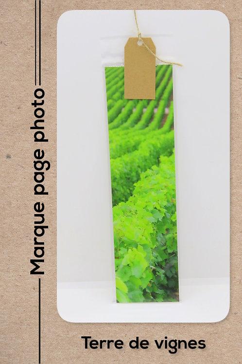 Terre de vignes modèle 4