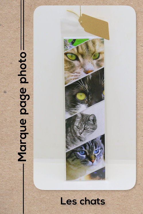 Pèle mêle de chats modèle 30