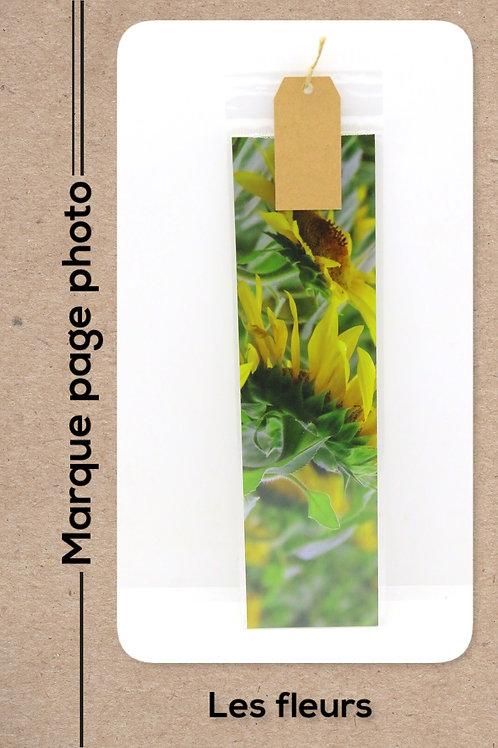 Fleurs modèle 7 Tournesols